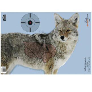 AXC_Tactical_Mesa_Arizona_axctactical_birchwood_casey_pregame_coyote_target